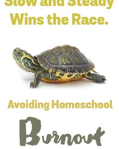 Homeschool Burnout - Seven ways to avoid it.