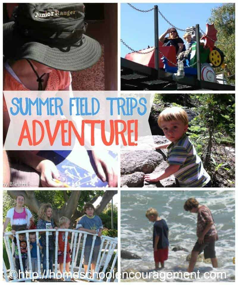 Whether you homeschool through the summer or not, you can plan field trips for your kids.  Take a look at a few ideas that will add adventure and learning to your summer.  #homeschool #hsmomwins