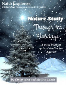 Book Review:  Nature Studies Through the Holidays by Shining Dawn Books