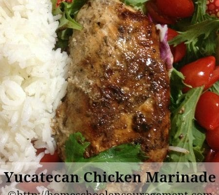 Yucatecan Chicken Marinade (p.142-143 of Mexican Everyday by Rick Bayless)