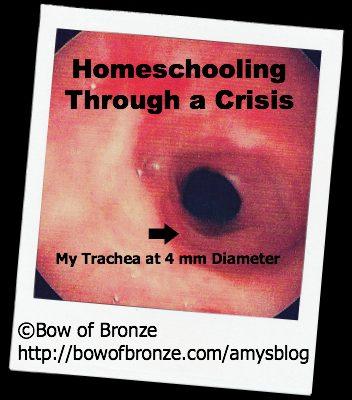 Homeschooling In Crisis
