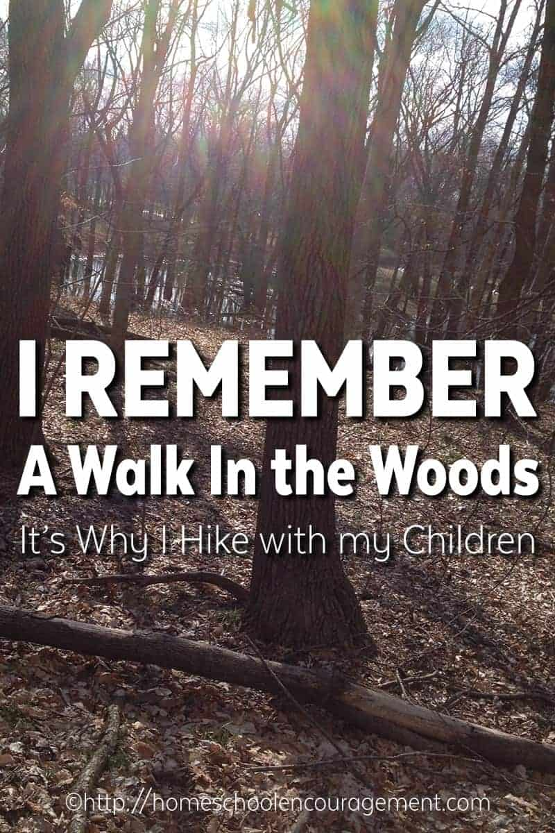 A Walk in the wood - why I go hiking with my kids. Hiking with children.