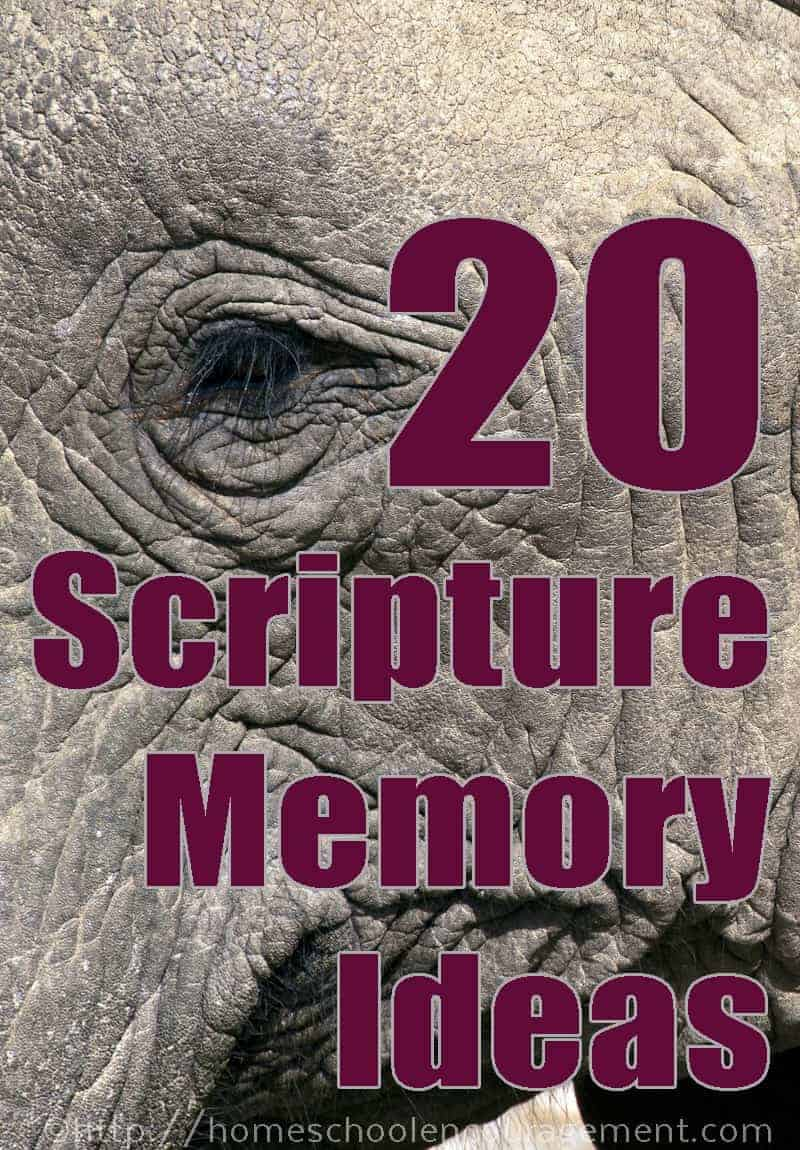 Scripture memory is important! Here are 20 resources to help you help your kids memorize Scripture.