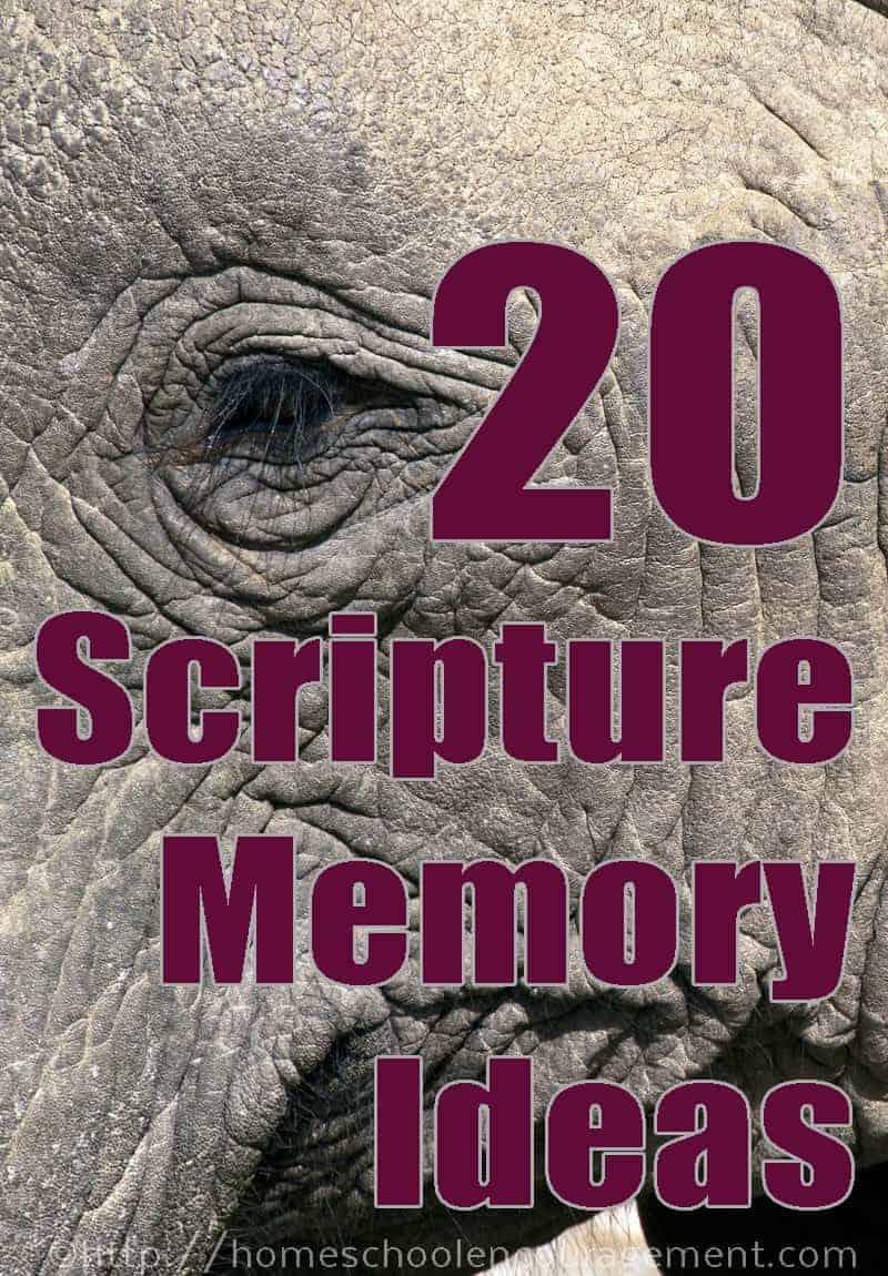 Scripture Memory - Importance, Methods, Free Printables, More
