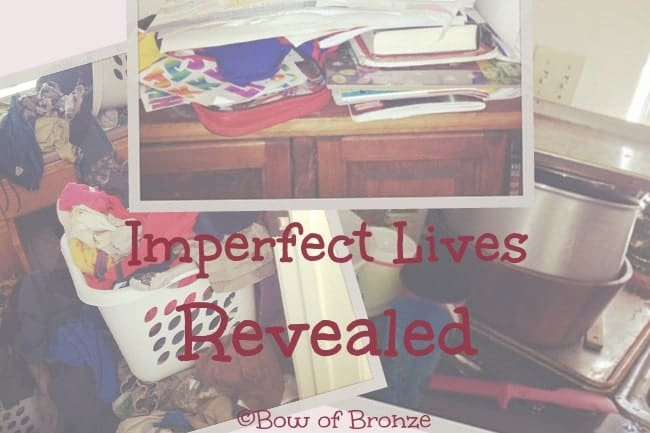 Imperfect Lives Revealed (image)