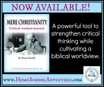 Mere Christianity Critical Analysis Journal by Stacy Farrell is a fantastic in depth study of this amazing book