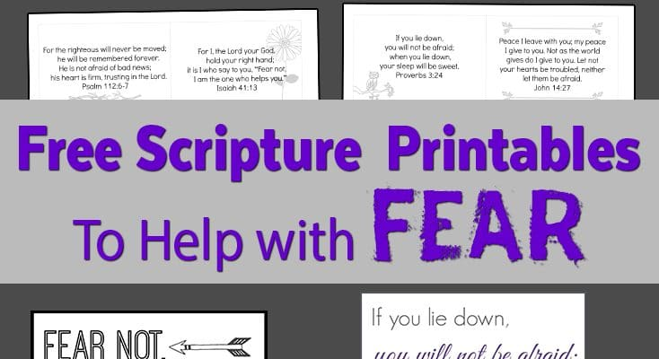 Do Not Fear! Printable Scripture Cards and Posters