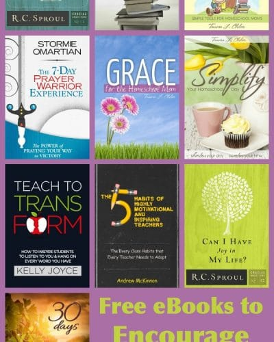 Free Ebooks to Encourage Homeschool Moms