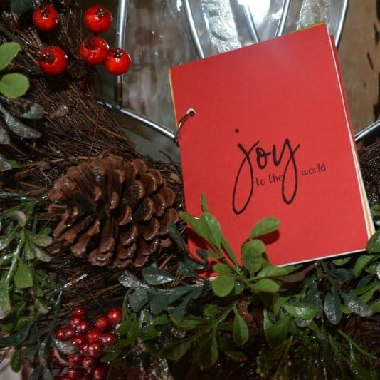 JOY to the world Journal