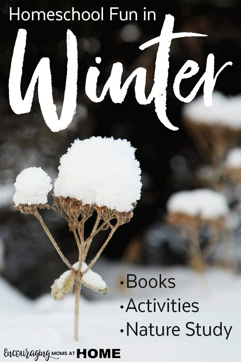 Winter is a great time to add fun to your homeschool.  Take a look at the ideas in this post for nature studies, read-alouds, and fun projects for cold, snowy days.