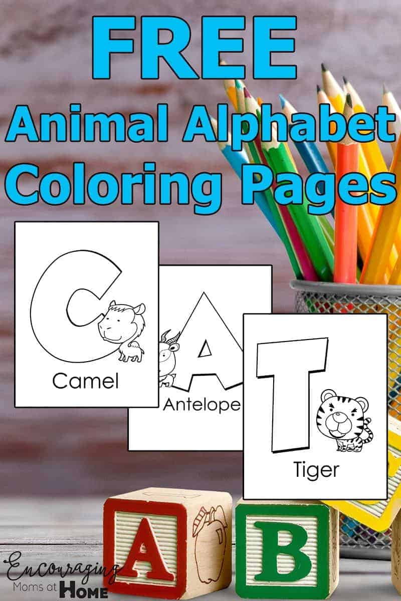 Alphabet Coloring Pages Animal Alphabet