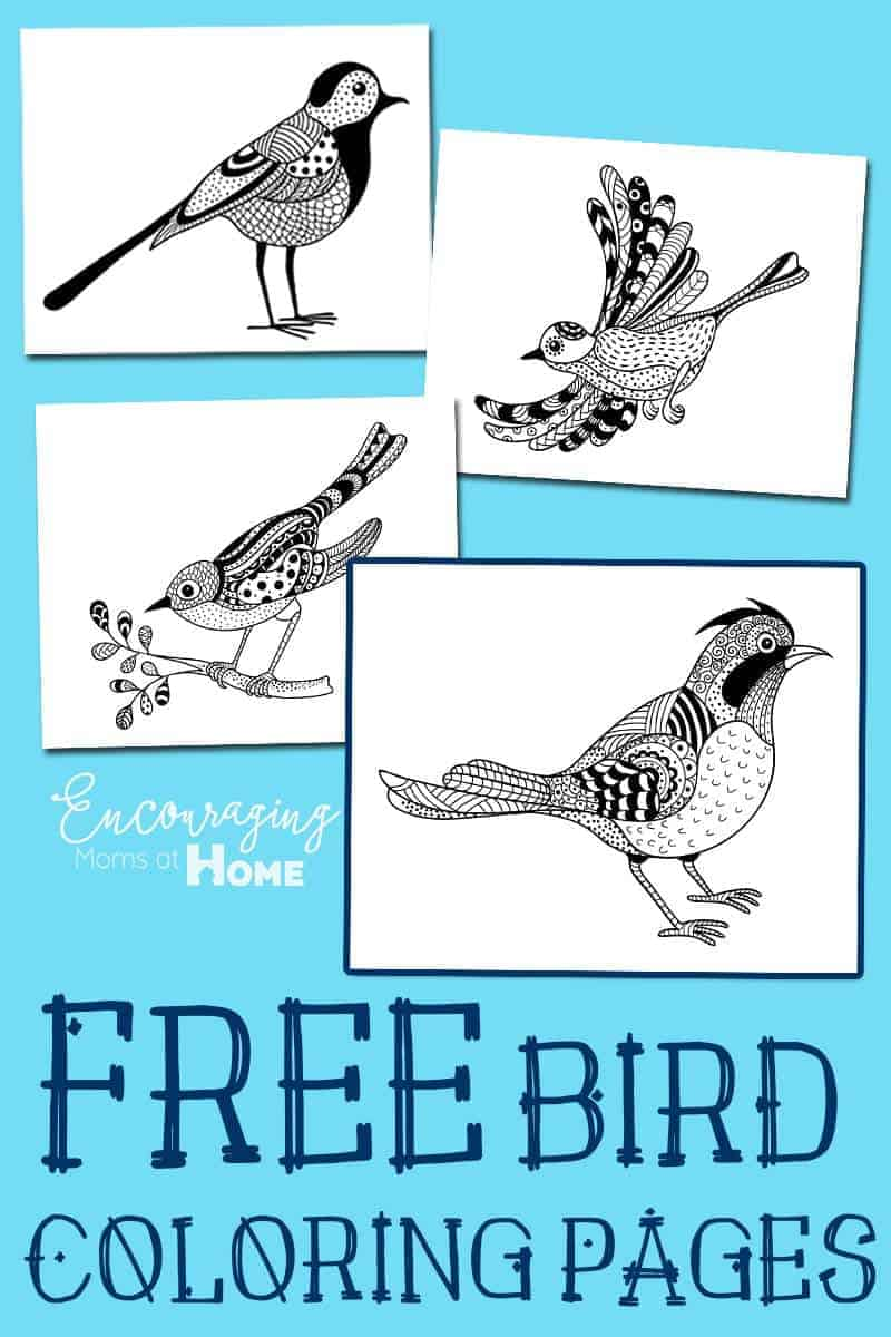 Bird Coloring Pages Images Crazy Gallery 286393 Coloring