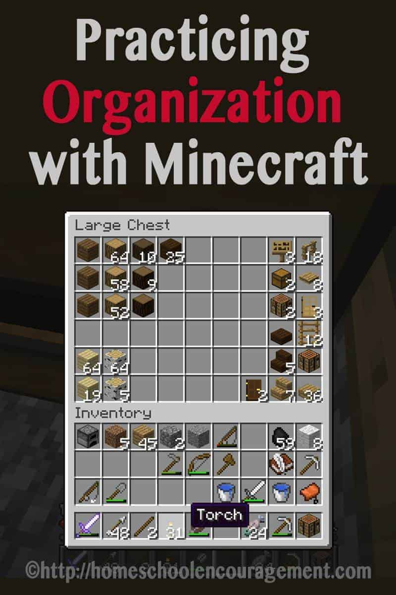 Practicing Organization with Minecraft: Learning with Minecraft