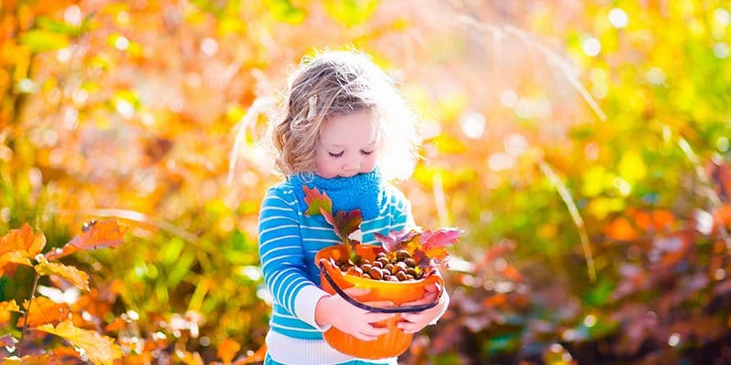 The Ultimate Family Fall Bucket List