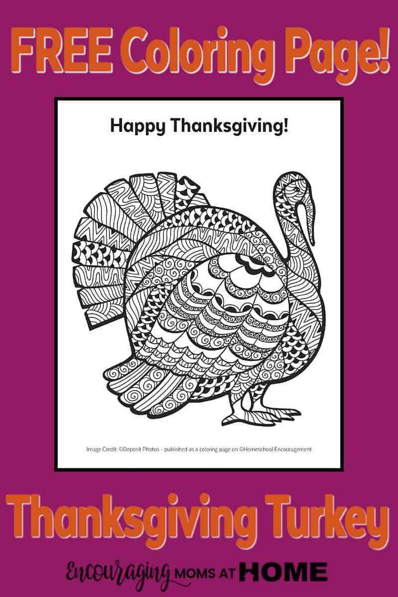free coloring pages for adults thanksgiving : Free Printable Turkey Coloring Page For Kids Or Adults