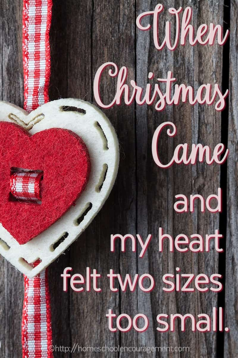 Is your perfect Christmas gift something that cannot be found under the tree? Does that something cause you to loose the joy of the holidays and make your heart feel small? Take a look at one mom's realization that when our hearts are hurting, our REAL gift has already been given. And we can find it in the manger!