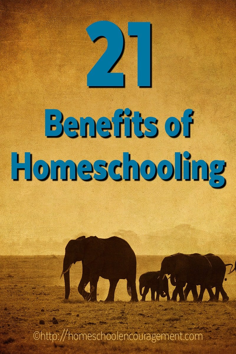 Are you considering homeschooling your children? Here are 21 positive reasons to homeschool from a mom's perspective.