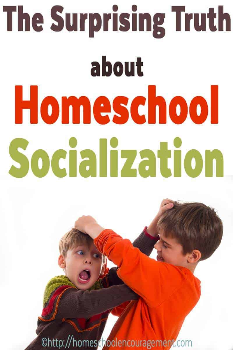 Homeschool Socialization. Again. Seriously, get over it already.