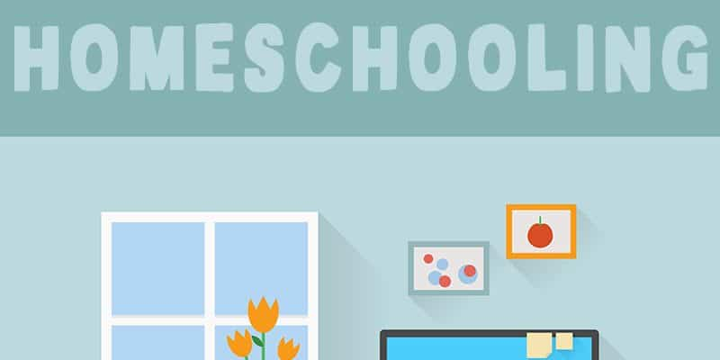 Homeschooling: Everything You Need to Know - Homeschool Pros and Cons, Homeschool How To, Homeschool Methods, Homeschooling Support and more!