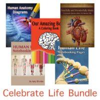 Celebrate-Life-Human-Body-Unit-Study