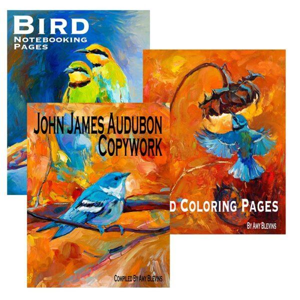 Learning About Birds Unit Study Set