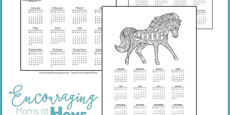2016 Calendar Printable Year At A Glance Grown-Up Coloring