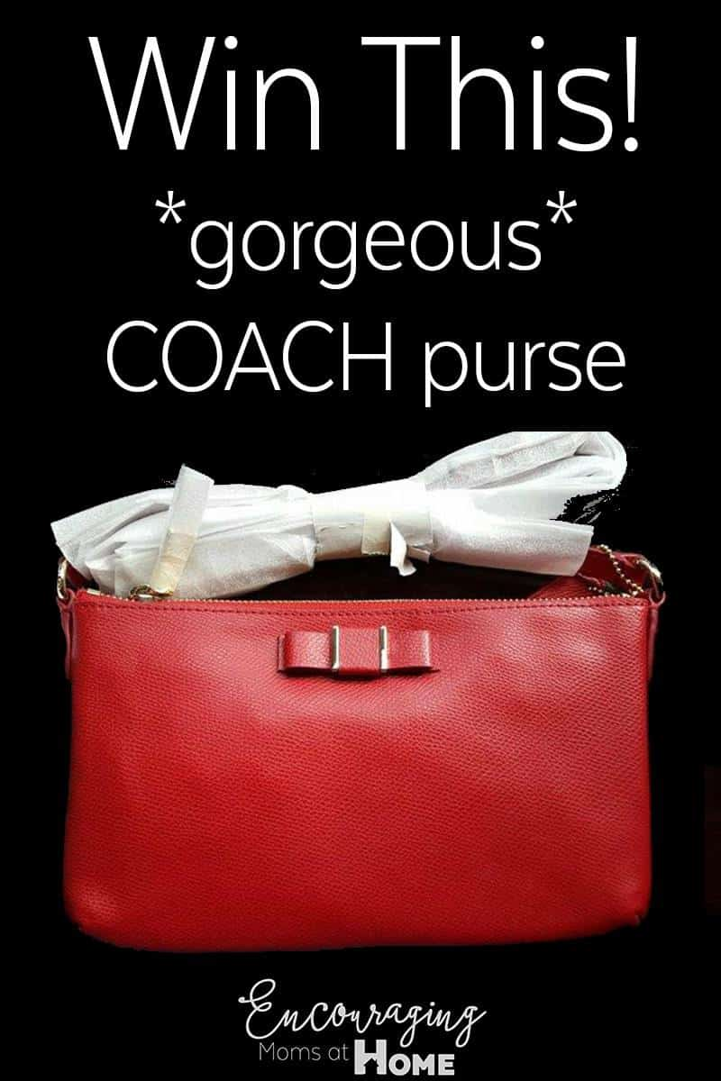 If you are like me, your purse gets messy.  Here are 10 (kid-inspired) ways to keep your purse clean.