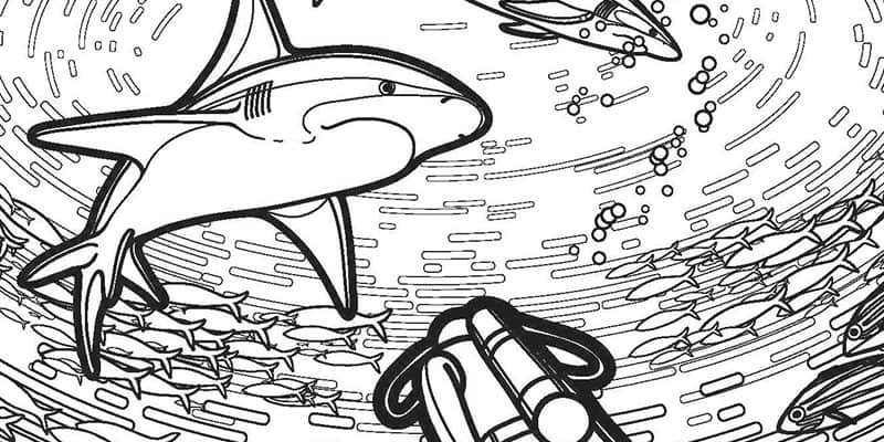 Shark Coloring Pages - Free Printable Download