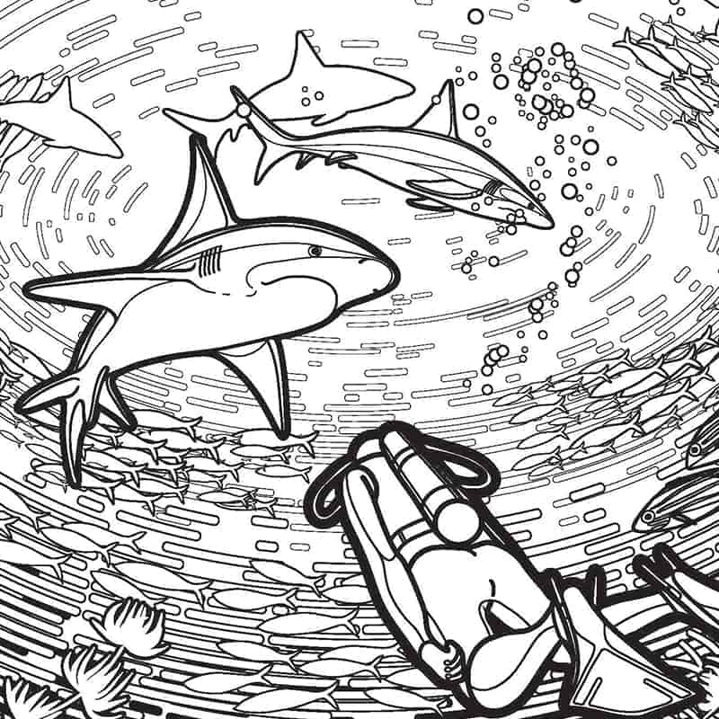 Free Shark Coloring Pages for Week and More