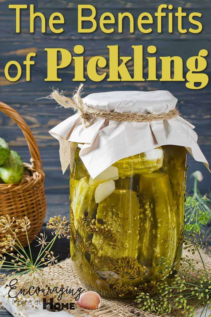 The many benefits of pickling your food.