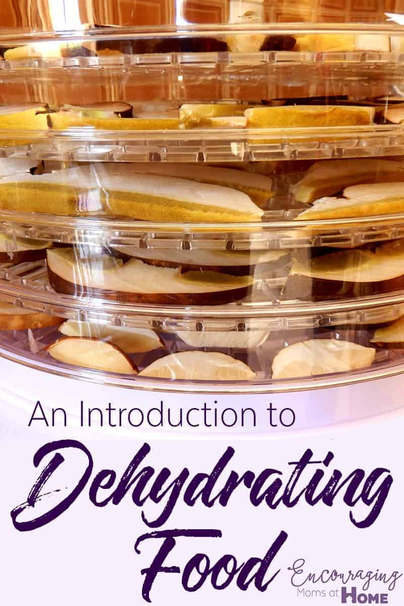 Dehydrating food is a popular method of food preservation. Here is an introduction to getting started.