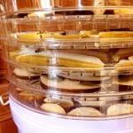 An Introduction to Dehydrating Food