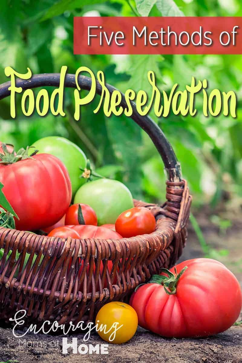Five Methods Of Food Preservation