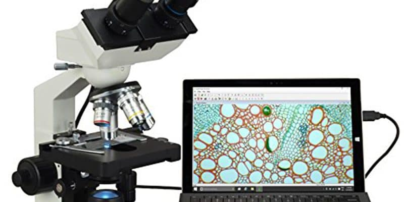 10 Ways to Use a Microscope in your Homeschool