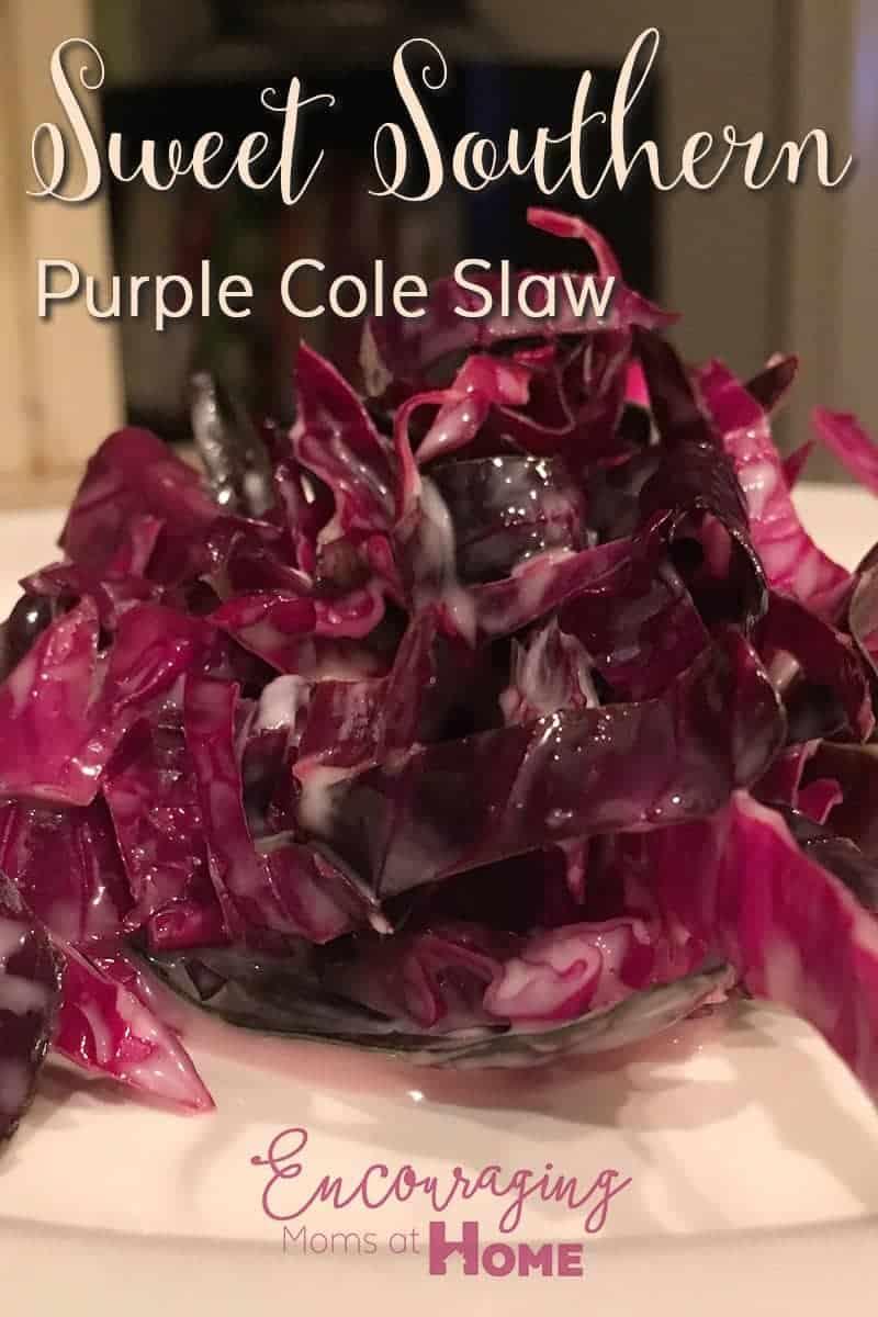 Sweet Southern Pretty Purple Cole Slaw