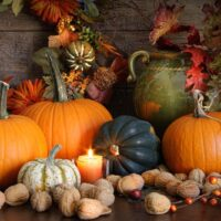 Still life harvest  with pumpkins, nuts and gourds for Thanksgiving