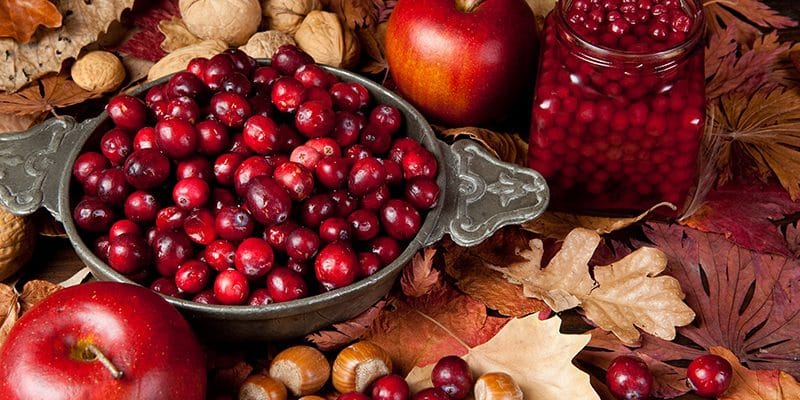 25 Best Cranberry Recipes for the Holidays