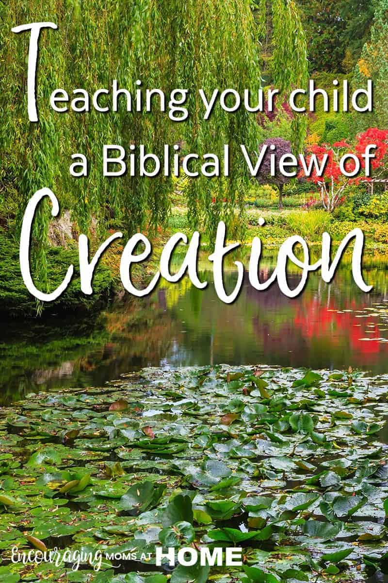 How to teach your child a biblical creation view