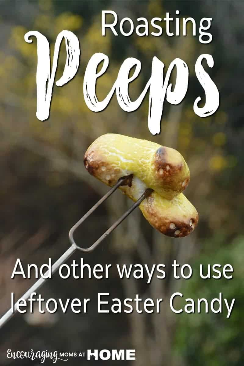 Have Peeps leftover from Easter?  Try roasting them.  This is an easy, fun and delicious activity for those cool summer nights around the fire. We also give a few ideas  and recipes for what to do with all the leftover Easter candy.