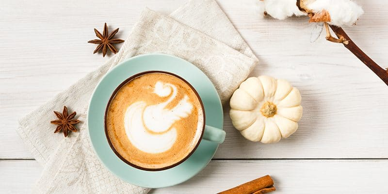 Best Gifts for Pumpkin Spice Latte Everything