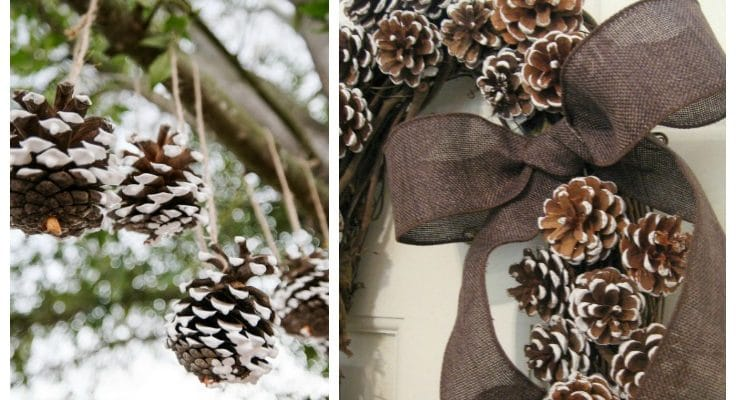50 Adorable Pinecone Crafts for Kids to Make