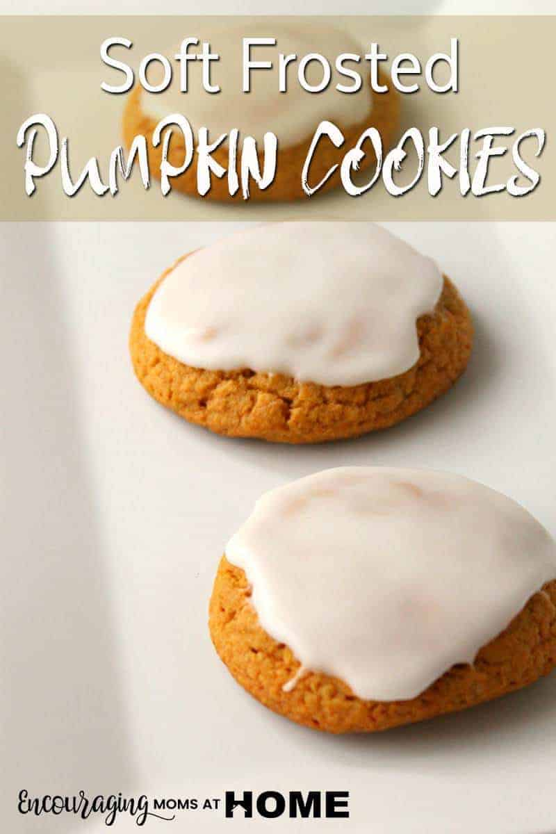 Did you know that pumpkin is more than a fall and Thanksgiving tradition? Pumpkin is a superfood loaded with antioxidants, and disease-fightingvitamins. Something that you could add to your diet all year round. These soft pumpkin cookies are great to make for goodies to give to loved ones, for school parties, or as a treat for yourself.