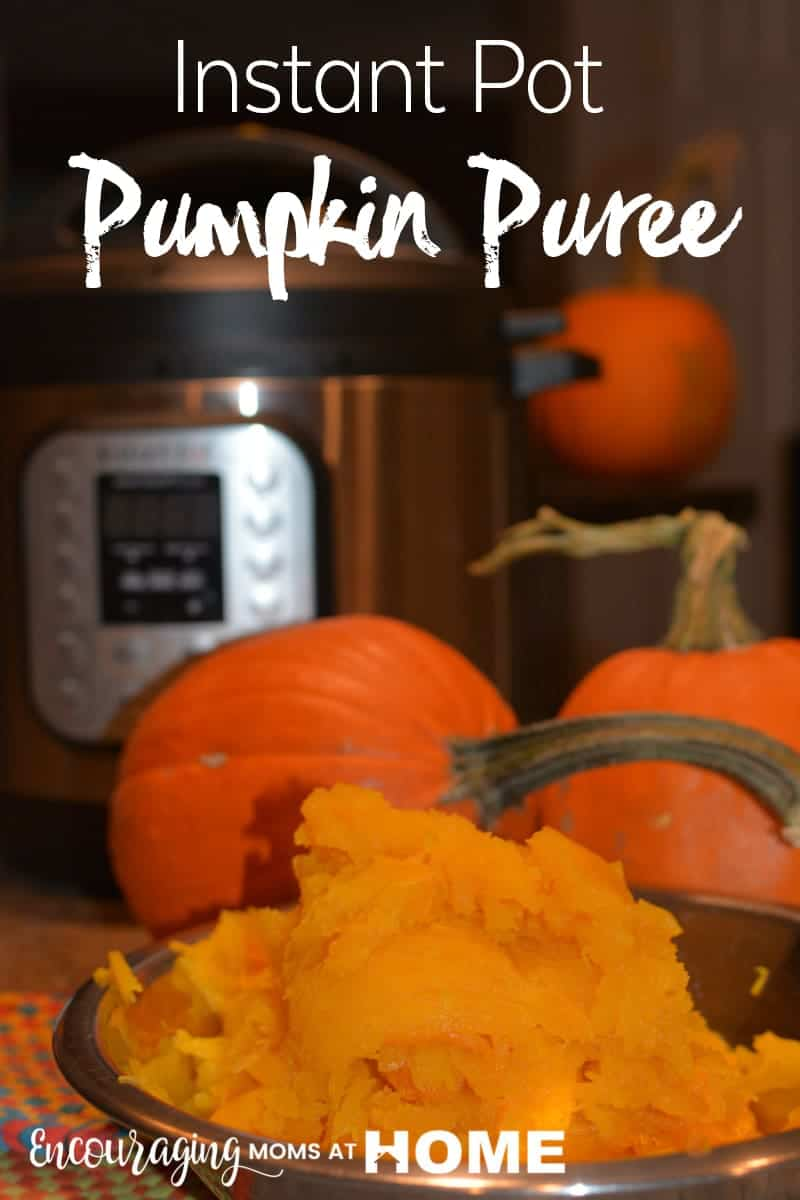 Homemade pumpkin puree is quick and easy in the Instant Pot. And the best part is that it's not at all messy. Take a look at our post for the instructions plus a list of yummy recipes for pumpkin goodies this holiday season.