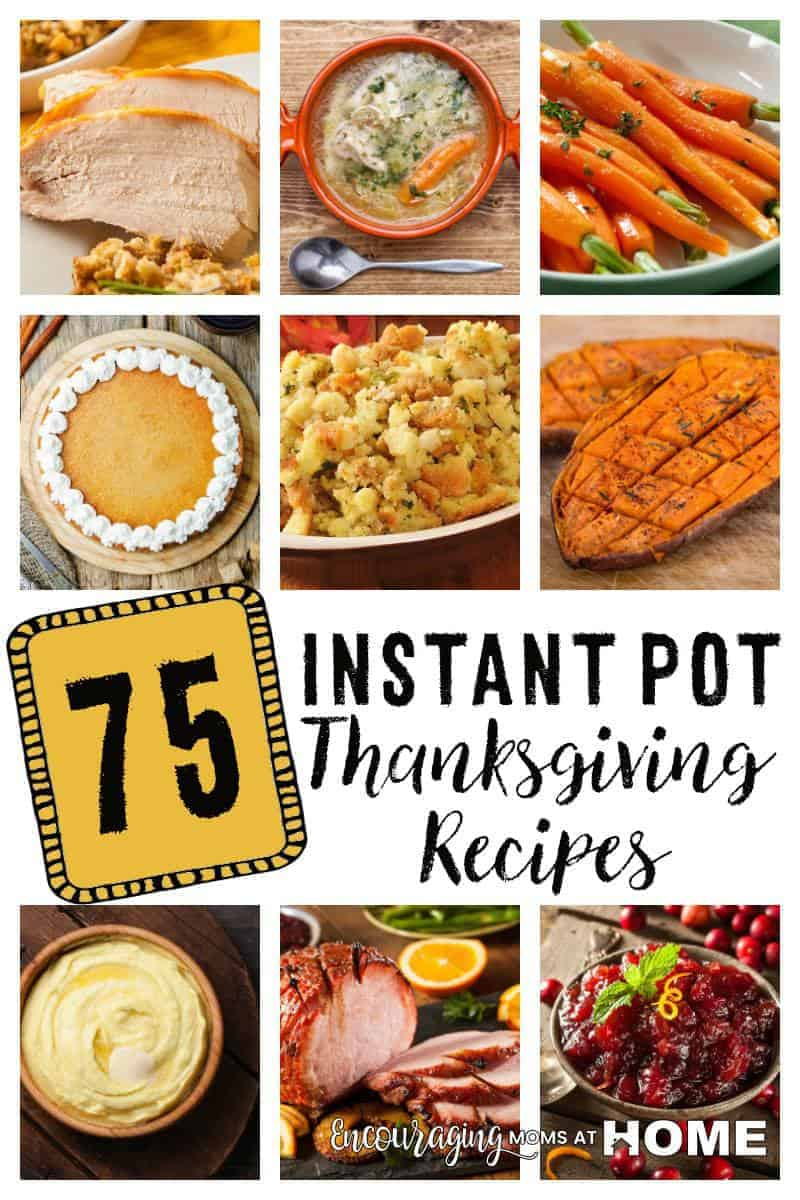 Trying to decide how to juggle all the pots and pans it takes to make your Thanksgiving meal? Have you considered using your Instant Pot? You can make almost every dish you would want for Thanksgiving in the Instant Pot. Take a look at these 75 recipes to get you start in your menu planning.