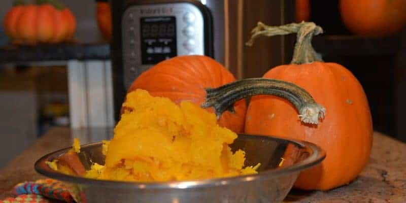 How to Puree Pumpkins in Your Instant Pot