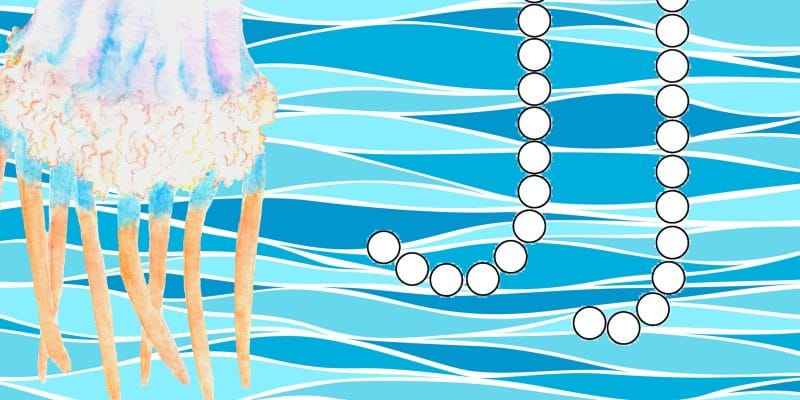 J is for Jellyfish: Dotted Alphabet Pages